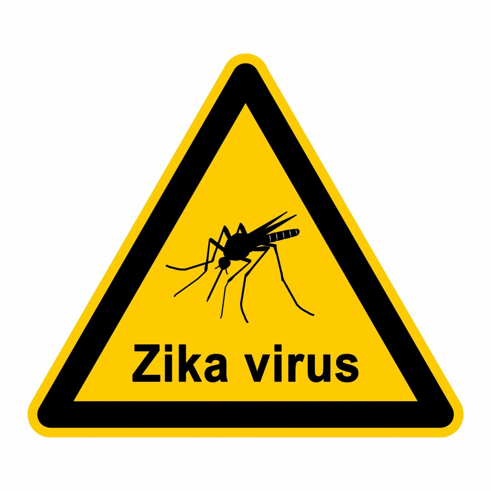 Zika Virus: Are You At Risk?